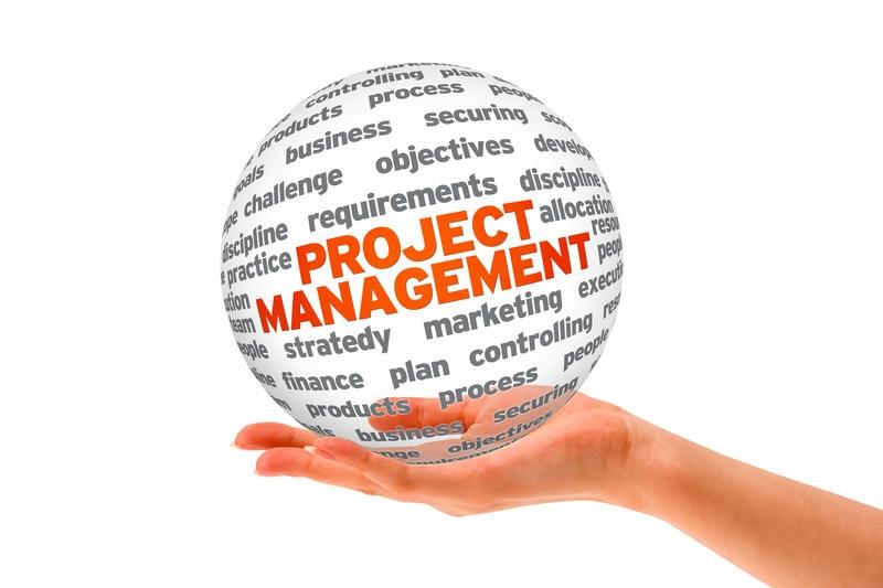project management it