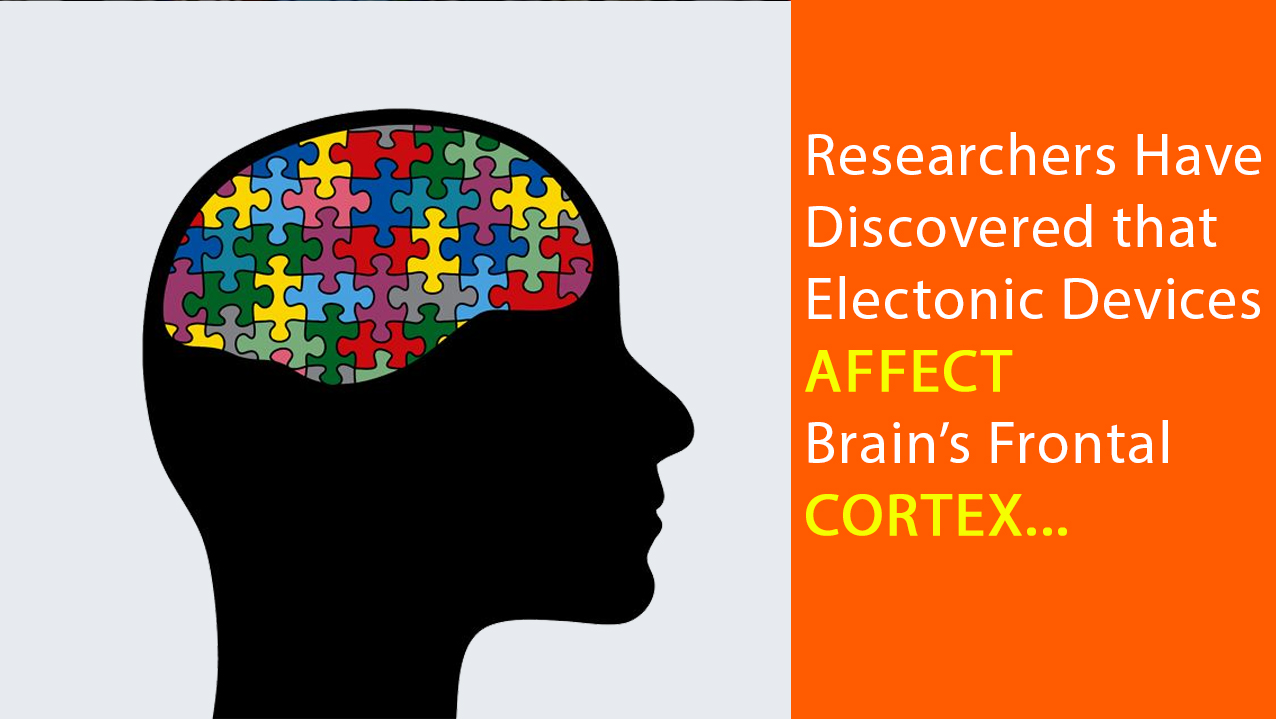 brain-cortex