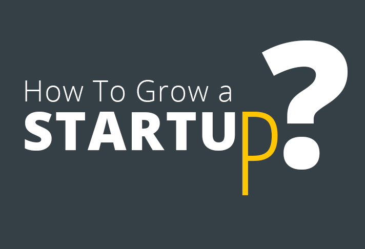 how-to-grow-a-startup-1
