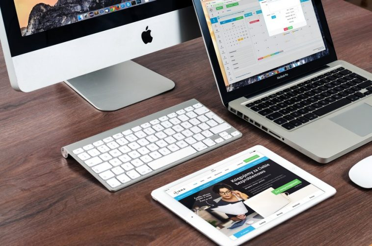 top-freelance-skills