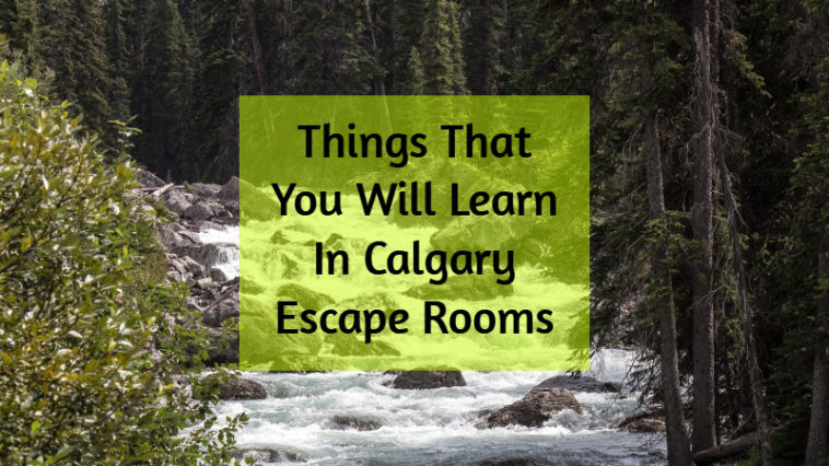 5 Things To Learn in Calgary Escape Rooms